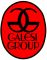 Galesi Group